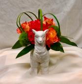Baby Llama Drama Fresh Floral Design