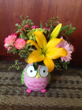 Baby Owl Bouquet