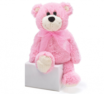 Baby Pink Bear Baby Gift