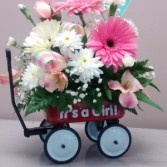 Baby Wagon Baby arrangement