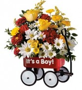 Baby's First Wagon - Boy New Baby Flowers