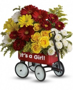 Baby's First Wagon - Girl Keepsake Wagon Arrangement in Warrington, PA | ANGEL ROSE FLORIST INC.