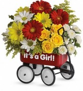 Baby's First Wagon - Girl New Baby Flowers