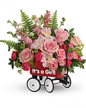 BABY'S FIRST WAGON GIRL  in Fort Lauderdale, FL | ENCHANTMENT FLORIST