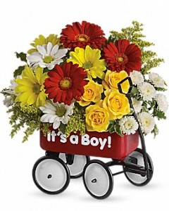Babys Wow Wagon  Baby  in Princeton, TX | Princeton Flower and Gift Shop