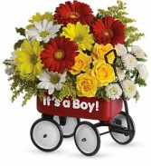 Baby's Wow Wagon Boy or Girl T35-1