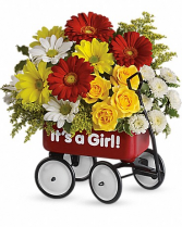 Baby's Wow Wagon By Teleflora - Girl Baby Wagon