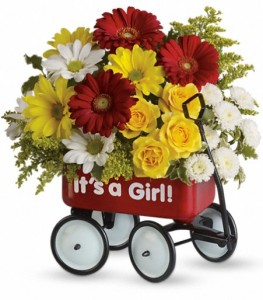 Baby's Wow Wagon Keepsake Container Arrangement  in Cape Coral, FL   ENCHANTED FLORIST OF CAPE CORAL
