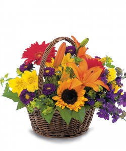 Natures' Pride                     Basket Arrang