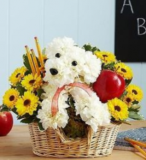Back to School Pooch Floral Arrangement