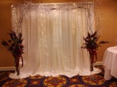 Backdrop with Light Rental  Wedding Decoration Wedding Florist and Rental In DC VA MD