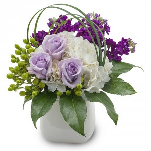 Bailey Boo Arrangement in Fort Smith, AR | EXPRESSIONS FLOWERS, LLC