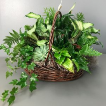 Balance of Nature Garden Basket