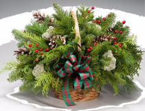 Balsam fragrance Mixed greens with bow