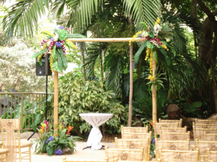 BAMBOO ARCH TROPICAL