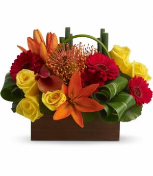 Bamboo Getaway  in Fort Collins, CO | D'ee Angelic Rose Florist