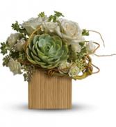 Bamboo Mojave TFWEB617 Bouquet