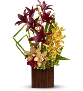 Bamboo Oasis   in Fort Lauderdale, FL   ENCHANTMENT FLORIST