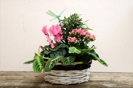 Banded Basket Planter