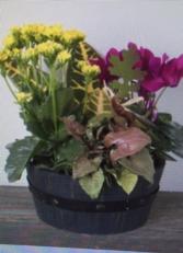 BARREL OF FALL mixed planter