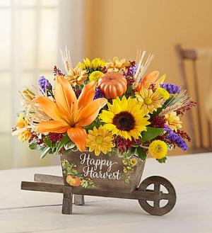Barrow of harvest Specialty in Franklin, IN | COFFMAN'S FLOWER STUDIO
