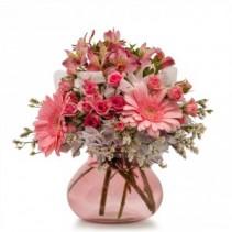 Bashful Fresh Flower Arrangement