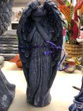 Bashful angel