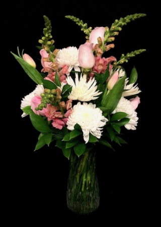 Bashful Pink & White