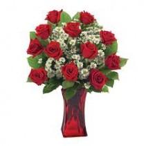 Basic dozen roses Valentines