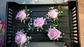 Basic Rose Corsage
