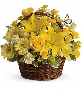 Basket Full of Wishes Arrangement in Coral Springs, FL | DARBY'S FLORIST