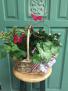 Basket Garden Basket Garden