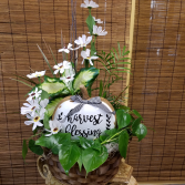 Basket Garden of Grace