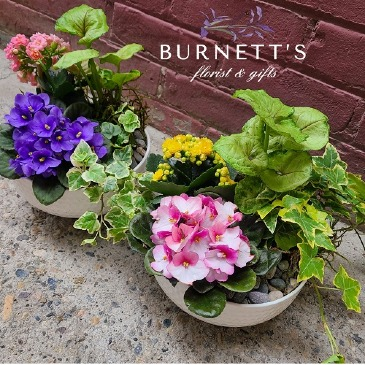Basket Garden Planter