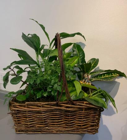 Basket garden with fairy planter