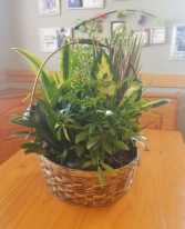 Basket Garden(12in)
