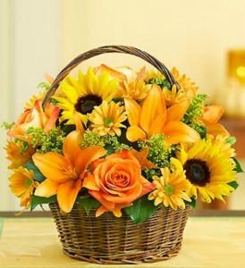 Basket of Autumn Fields