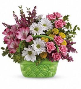 Basket of Beauty