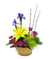Basket of Blooms Basket