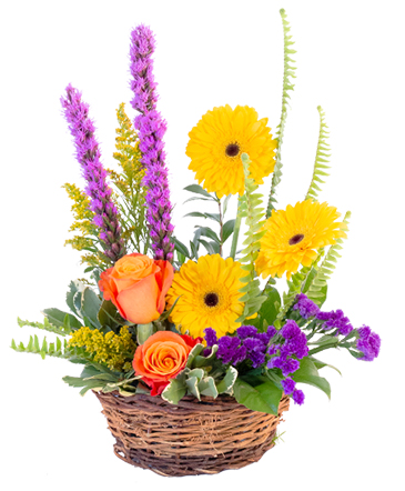 Basket of Blooms Basket Arrangement