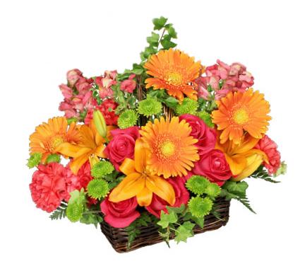 Basket of Bright Blooms basket arrangement