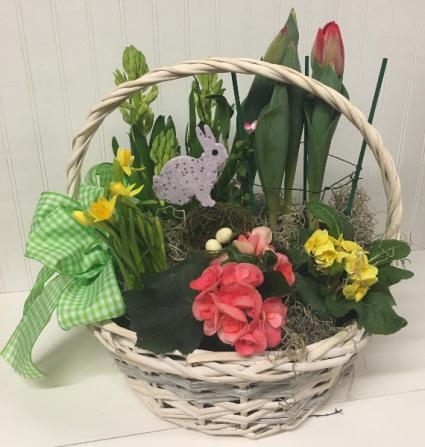Basket of Bulbs and Plants