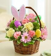 Basket Of Bunny