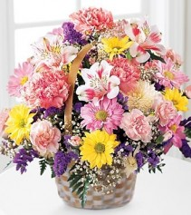 BASKET OF CHEER ALL OCCASION FLOWERS