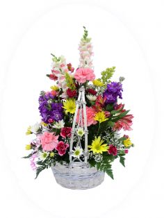 BASKET OF CHEER  Basket Arrangement