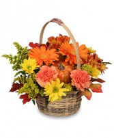 Basket of fall flowers fall colors in basket in Lebanon, NH | LEBANON GARDEN OF EDEN FLORAL SHOP