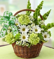 Basket Of Ireland