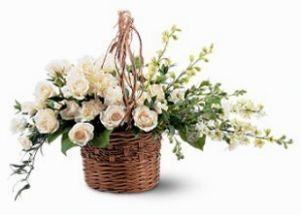 Basket of light FSN-8