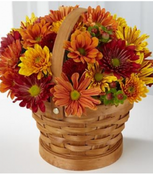 Basket of mixed fall pomps Delivered in all of Lorain County  in Elyria, OH | PUFFER'S FLORAL SHOPPE, INC.