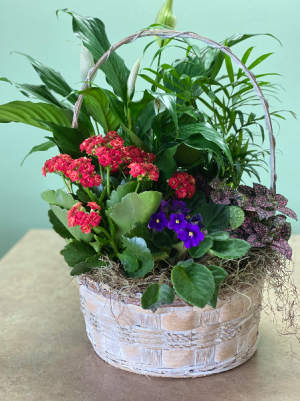 Basket of Spring  in Stuart, FL | Magnolia's Flower Shop